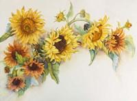 Arch of Sunflowers Fine Art Print