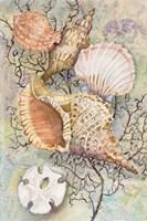 Jewels of the Sea Fine Art Print