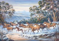 The Man From Snowy River Fine Art Print