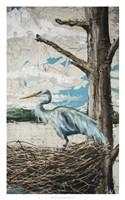 Midway Heron I Fine Art Print