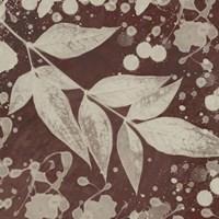 Botany Expressions III Framed Print