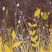 Botany Expressions V Framed Print