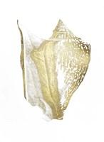 Gold Foil Shell III Fine Art Print