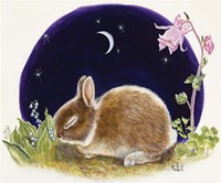 Sleeping Bunny Fine Art Print