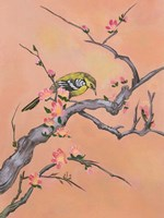 Asian Bird 1 Fine Art Print