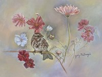 Sparrow In Cosmos Flowers Fine Art Print