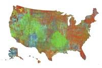 U.S.A. Map 4 Fine Art Print