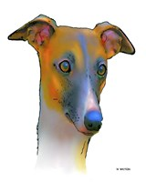 Greyhound 1 Fine Art Print