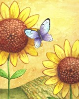 Sunflower and Butterfly Fine Art Print