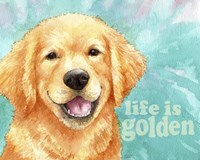 Life Is Golden Retriever Fine Art Print
