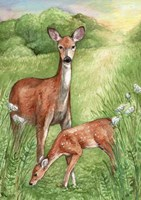 New Mother and Fawn Fine Art Print