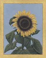 Apple Sunflower Fine Art Print