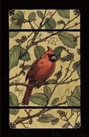 Apple Cardinal Fine Art Print