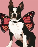 Butterfly Dog 3 Fine Art Print