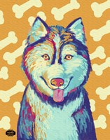 Husky Pop Fine Art Print