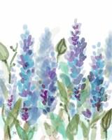 Lavendar Garden Fine Art Print
