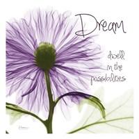Purple Chrysanthemum Dream Fine Art Print