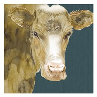 Hogans Brown Cow Fine Art Print