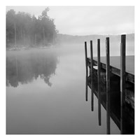 Stillness Fine Art Print