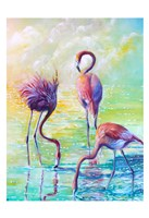 Flamingo Family 1 Fine Art Print