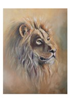 Lion 1 Fine Art Print