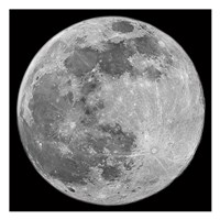 To The Moon 3 Fine Art Print