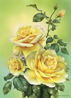 Roses Yellow Fine Art Print