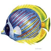 Fish 1 Blue-Yellow Fine Art Print