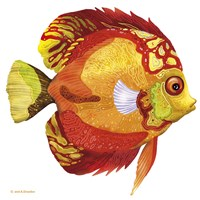 Fish 3 Red-Yellow Fine Art Print
