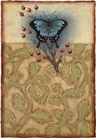 Salt Meadow Butterfly Fine Art Print