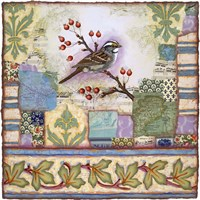 Edgartown Sparrow Fine Art Print