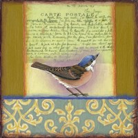 Carte Postale Bird 3 Framed Print