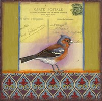 Carte Postale Bird 4 Framed Print