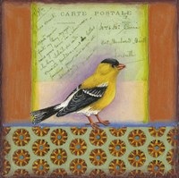 Carte Postale Bird 7 Framed Print