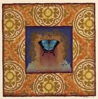 Dunster Street Butterfly Framed Print