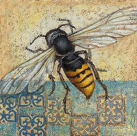 Yellow Jacket Fine Art Print