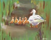 Ducks Fine Art Print