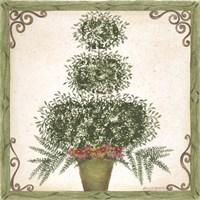 Topiary III Fine Art Print