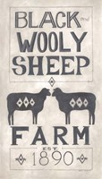 Black Wooly Sheep Fine Art Print
