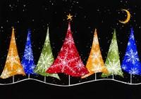 Holiday Trees Fine Art Print