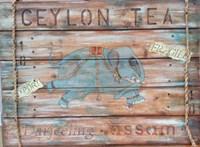 Ceylong Tea Fine Art Print