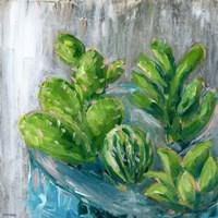Southwestern Garden III Fine Art Print