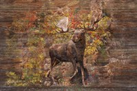 Moose Meadow Fine Art Print