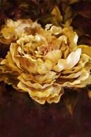 Floral Fine Art Print