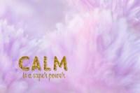Calm is a Superpower Fine Art Print