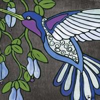 Hummingbird on Black Fine Art Print