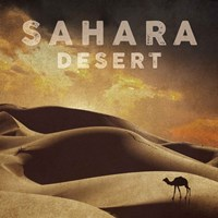 Vintage Sahara Desert with Sand Dunes and Camel, Africa Fine Art Print