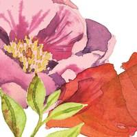 Vibrant Floral II Framed Print