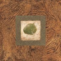 Sedona Naturals A Fine Art Print