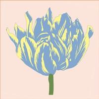 Soho Tulip I Fine Art Print
